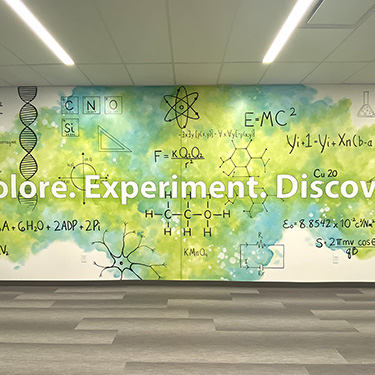 artistic fun science mural
